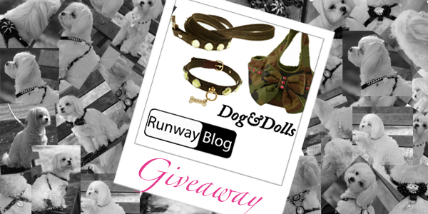 dogedolls_runwayblog_giveawya
