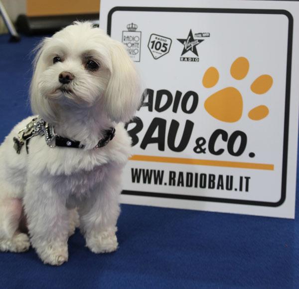 OLIVIA SPECIAL GUEST OF RADIO BAU